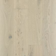 Shaw Floors Shaw Hardwoods Castlewood Oak Knight 01075_SW485