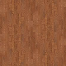 Shaw Floors Shaw Hardwoods Hawkins 5 Saddle 00401_SW488
