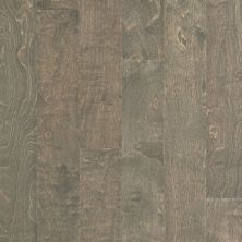 Shaw Floors Shaw Hardwoods Brooksville Windsurf 05034_SW492