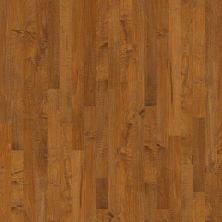 Shaw Floors Shaw Hardwoods Expedition Maple 3 Ivyland 00256_SW506