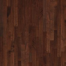 Shaw Floors Shaw Hardwoods Expedition Maple 3 Maple Syrup 00895_SW506