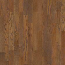 Shaw Floors Shaw Hardwoods Homestead Copper 00272_SW518