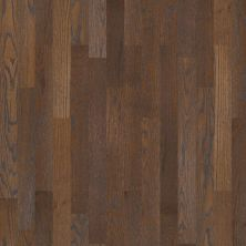 Shaw Floors Shaw Hardwoods Homestead Hearth 00327_SW518