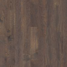 Shaw Floors Shaw Hardwoods Sequoia 6 3/8 Crystal Cave 05003_SW545