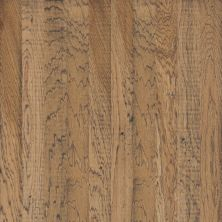 Shaw Floors Shaw Hardwoods Belle Grove Fireside 02008_SW550