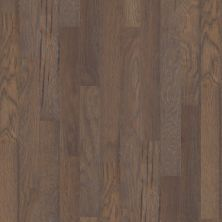 Shaw Floors Shaw Hardwoods Mineral King 5 Crystal Cave 05003_SW558