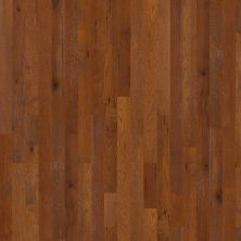 Shaw Floors Shaw Hardwoods Barlow Road Caravan 00955_SW563
