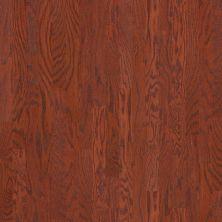 Shaw Floors Shaw Hardwoods Albright Oak 3.25 Cherry 00947_SW581