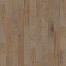 Shaw Floors Shaw Hardwoods Ocala Oceanside 00529_SW590