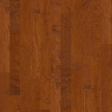 Shaw Floors Shaw Hardwoods Ocala Burnside 00627_SW590
