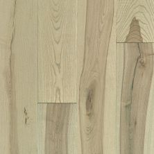 Shaw Floors Repel Hardwood Reflections Ash Native 01026_SW659