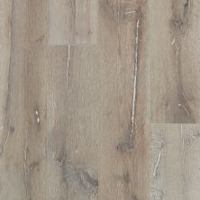 Shaw Floors Repel Hardwood Reflections White Oak Tinderbox 05082_SW661