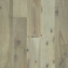 Shaw Floors Shaw Hardwoods Acacia Silver 05053_SW667