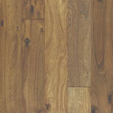 Shaw Floors Shaw Hardwoods Acacia Bronze 07033_SW667