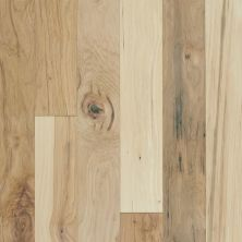 Shaw Floors Shaw Hardwoods Northington Smooth Canopy 01032_SW669
