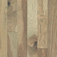 Shaw Floors Shaw Hardwoods Northington Smooth Burlap 02026_SW669