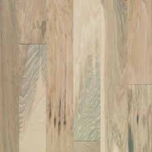 Shaw Floors Shaw Hardwoods Northington Brushed Canopy 01032_SW670