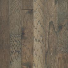 Shaw Floors Shaw Hardwoods Northington Brushed Chestnut 07035_SW670