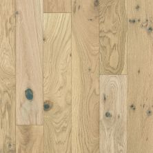 Shaw Floors Shaw Hardwoods Cornerstone Oak Travertine 01083_SW676