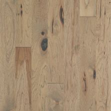Shaw Floors Repel Hardwood High Plains 5 Sumac 01085_SW711