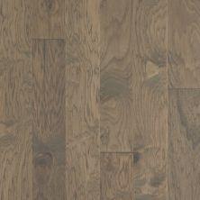 Shaw Floors Repel Hardwood High Plains 6 3/8 Nomadic 07070_SW712