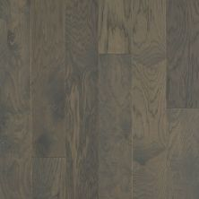 Shaw Floors Repel Hardwood High Plains 6 3/8 Kohl 09044_SW712