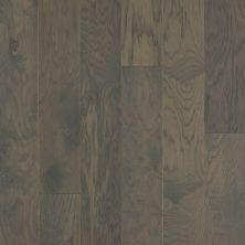 Shaw Floors Repel Hardwood High Plains 6 3/8 Kohl 09044_SW712