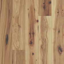 Shaw Floors Repel Hardwood Sanctuary Hickory Reunion 01087_SW715