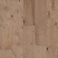 Shaw Floors Repel Hardwood Celestial Wicker 02061_SW744