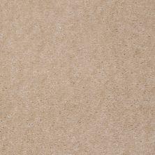 Shaw Floors SFA Painted Jewel Doeskin 97139_T1897