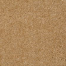 Shaw Floors SFA Painted Jewel Bronze Gold 97230_T1897