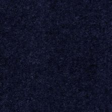 Shaw Floors SFA Painted Jewel Midnight 97433_T1897