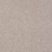 Shaw Floors Carpet Max Sugarbush Tree Bark 38118_T8238