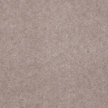 Shaw Floors Carpet Max Sugarbush Smokestone 38218_T8238