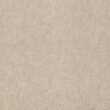 Shaw Floors Carpet Max Sugarbush Soft White 38417_T8238