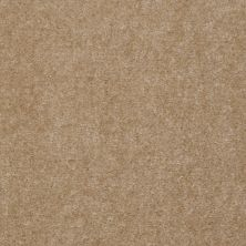 Shaw Floors Carpet Max Sugarbush Tandia 38817_T8238
