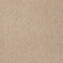 Shaw Floors Carpet Max Sugarbush Light Almond 38917_T8238