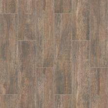 Shaw Floors Home Fn Gold Ceramic Ventura 8×36 Brown 00700_TG08B