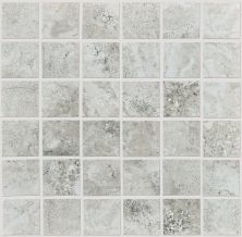 Shaw Floors Home Fn Gold Ceramic Cassio Mosaic Grey 00500_TG10E