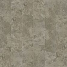 Shaw Floors Home Fn Gold Ceramic Delphi 12×24 Warm Grey 00570_TG13A