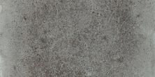 Shaw Floors Remy 4x8bn Bristol 00511_TG27D