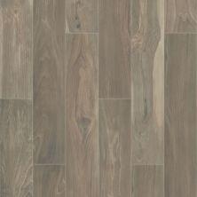 Shaw Floors Home Fn Gold Ceramic Mojave 8×48 Honey 00700_TG28B