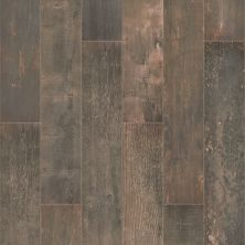 Shaw Floors Charwood 7×47 Burned 00719_TG28D