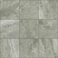 Shaw Floors Home Fn Gold Ceramic Picasso 13 Pepper 00500_TG29B