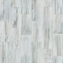 Shaw Floors Waterfalls 12×24 River Rush 00510_TG34D