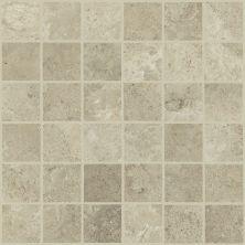Shaw Floors Home Fn Gold Ceramic Formula Mosaic Cast 00150_TG41B