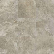 Shaw Floors Home Fn Gold Ceramic Formula 20×20 Emerge 00700_TG92C