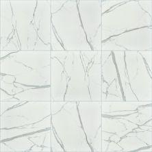 Shaw Floors Home Fn Gold Ceramic Infinity 13×13 Carrara 00150_TG98D
