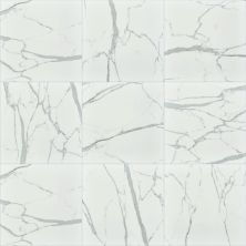 Shaw Floors Home Fn Gold Ceramic Infinity 20×20 Carrara 00150_TG99D