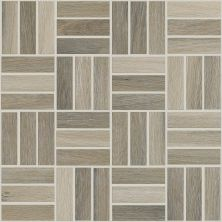 Shaw Floors Home Fn Gold Ceramic Revolution Mosaic Ash 00100_TGJ71